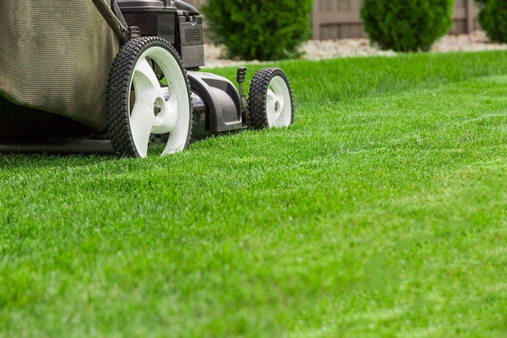 lawn mower being used